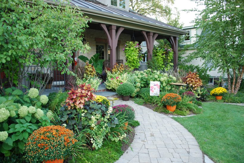 BRIGHTENING THE FALL LANDSCAPE WITH MUMS