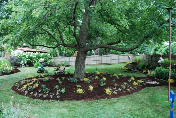 dwn petty side view after pic of maple bed