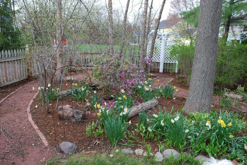Laura Nikon 4-26-15 arboretum etc 055
