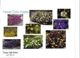 dwn thompson flower color palette 4-26-16