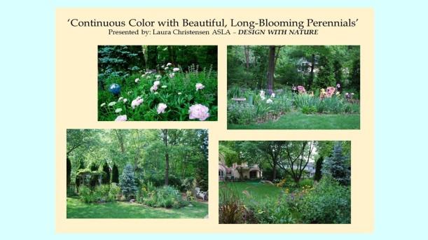 DWN GCI continuous color with perennials photo for blog - Copy