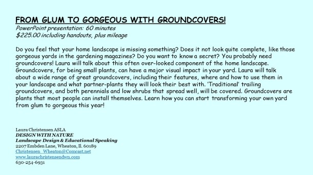 DWN GCI groundcover text for blog - Copy