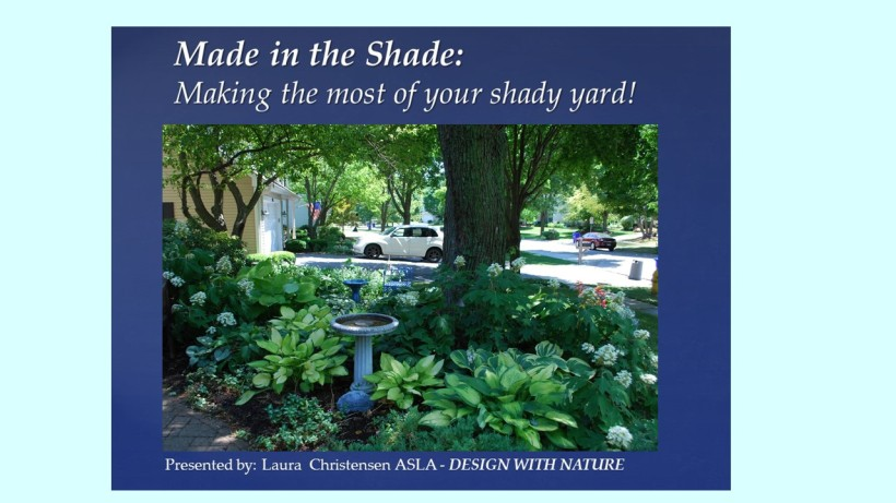 DWN GCI shade photo for blog