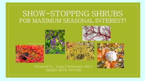 DWN GCI shrubs cover photo for blog