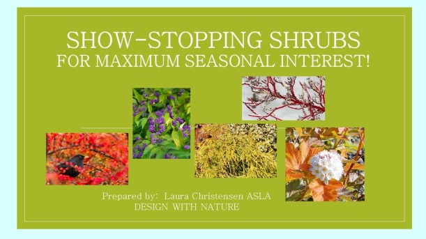 DWN GCI shrubs cover photo for blog