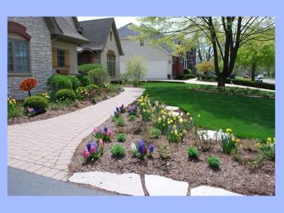 dwn krynick spring bulbs slides for blog 5-8-18 slide 1 of 4
