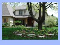 dwn krynick spring bulbs slides for blog 5-8-18 slide 3 of 4