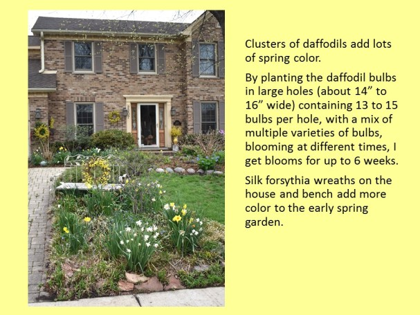 dwn my front yd in spring 4 slides for blog 5-6-18 slide 1 of 4