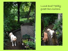 DWN laura garden walk 6-22-18 slide 2 of 7