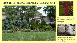 DWN Peters pollinator garden 8-3-18 slide 2 of 4