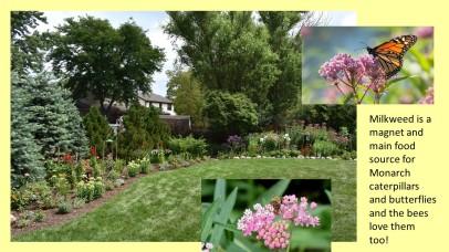 DWN Peters pollinator garden 8-3-18 slide 3 of 4