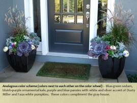 fall pots mcfarland front entrance purple scheme