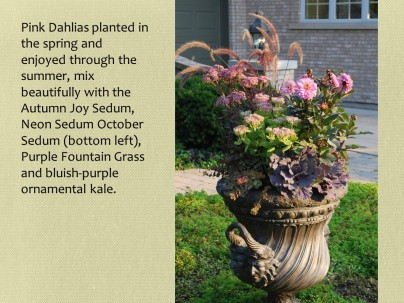merrill fall urn with sedums and dahlias