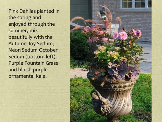 merrill fall urn with sedums and dahlias
