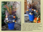 my blue pots by front door with purples and oranges